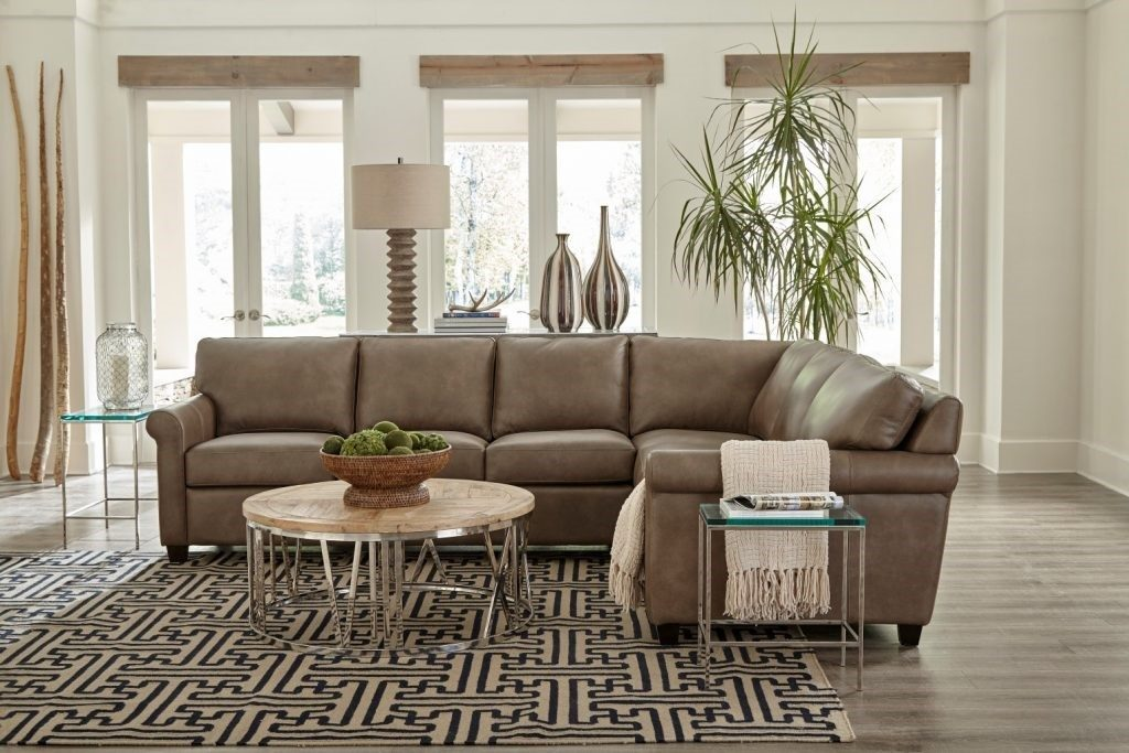 Stylish Sofas for Your Chattanooga Living Room Omnia